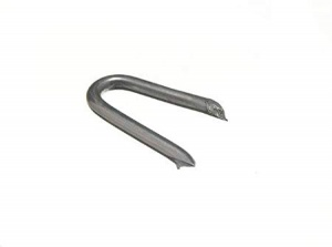 25mm Staples Galvanised (0.25kg pack)